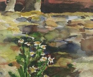 11 Vermont Flowers